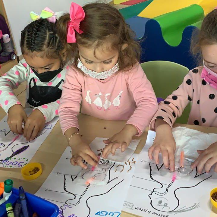 hickory-queretaro-preschool-juriquilla-kinder-1